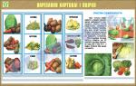 """Плакат """"Нарезка картошки и овощей"""""""