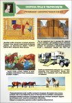 Плакат «Утримання і використання коней»(2) 1140110