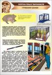 Плакат «Утримання свиней» 1140112