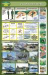 """Плакат """"Тактическая подготовка"""" (код 4520106)"""
