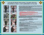 """Плакат """"Меры безопасности при пользовании оружием, боеприпасами и иммитационными средствами"""" код 4530205"""