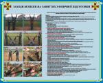 """Плакат """"Меры безопасности на занятиях по физической подготовке"""" код 4530207"""