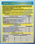 """Плакат """"Порядок проверки тормозного пути"""" код  4530303"""