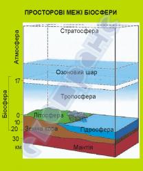Пространственные границы биосферы  4590202