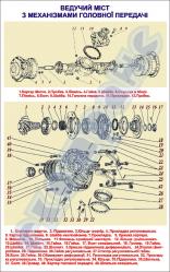 """Плакат """"Ведучий міст з механізмами головної передачі"""" код 4910105"""
