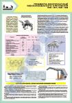 """Плакат """"Правила эксплуатации механизированного крепления МК-97-98"""""""